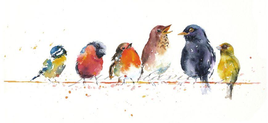 Птицы надежда кондрашова