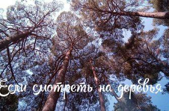 photo 2021 08 09 11.39.32