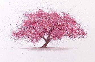 дерево розовом цвету